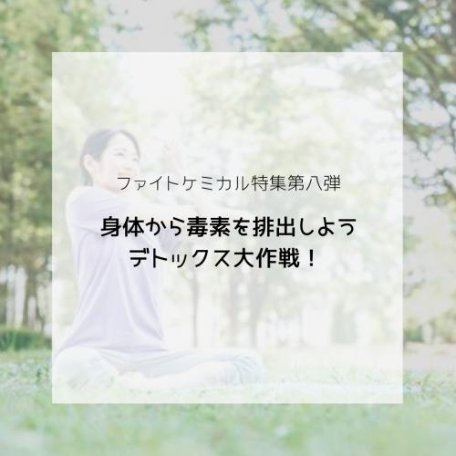 ファイトケミカル特集〜デトックス大作戦!〜