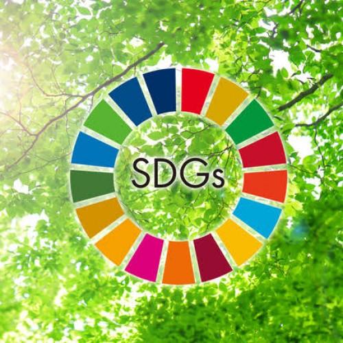 【SDGs】Shuの具体的な取り組みをお伝えします!
