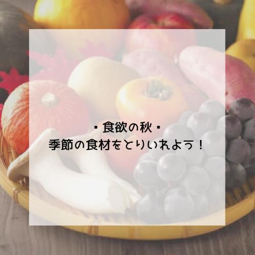 秋に食べたい🍁3つの旬の食材